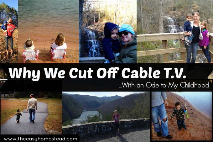 Why We Cut off Cable T.V....With an Ode to My Childhood | The Easy Homestead