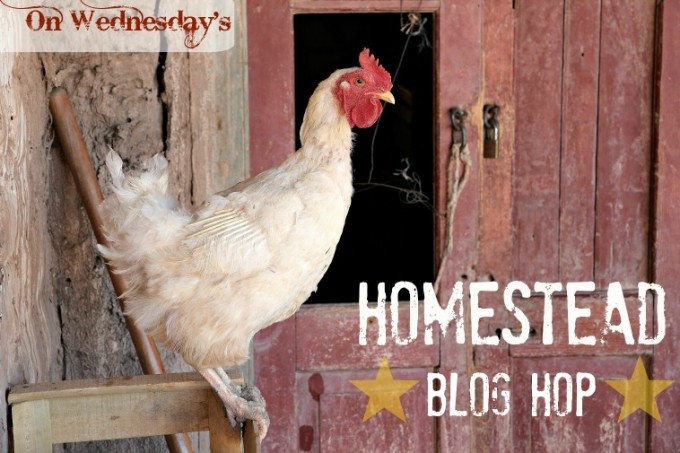 Homestead Blog Hop | The Easy Homestead (.com)