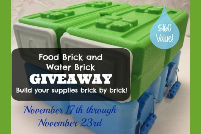 Brick Giveaway | The Easy Homestead (.com)