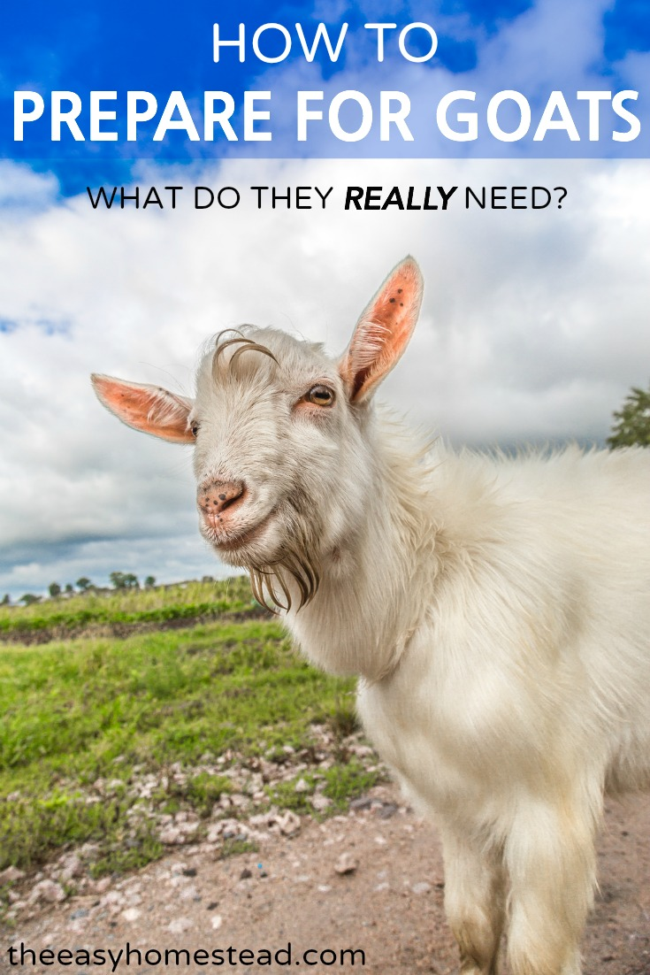 How to Prepare for Goats | The Easy Homestead (.com)
